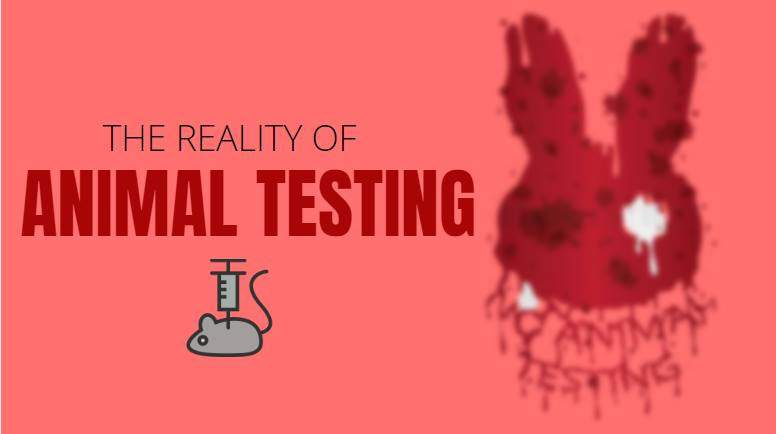 Reality Behind Animal Testing